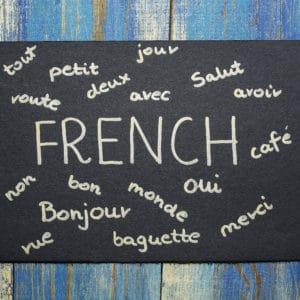 Intensieve zomercursus Frans A2.1 – augustus – 17/8 – 21/8/2020 (24 lesuren/1 week)